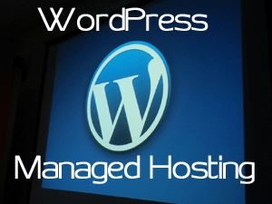 Website Hosting, it's History and WordPress